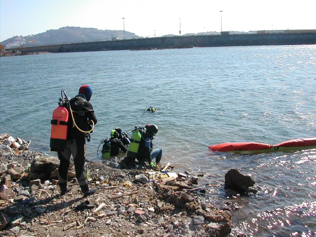 Reubicación de especies marinas protegidas en la ampliación del puerto de Ceuta